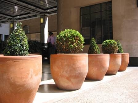 Large flower pots