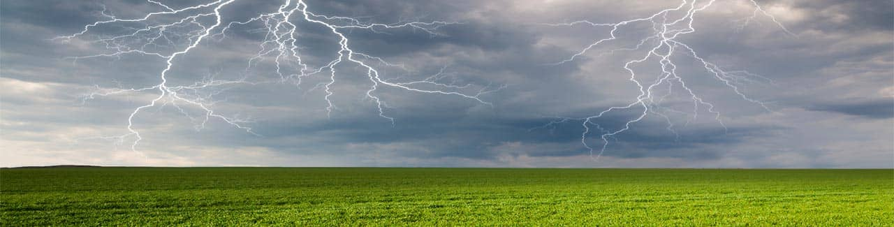 Lightning in a field